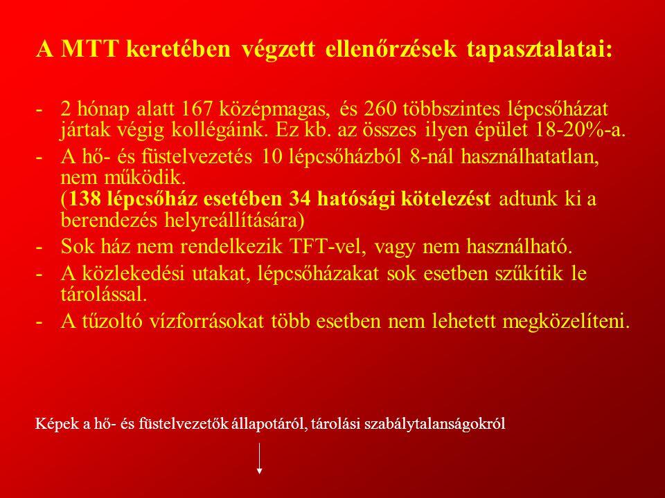 A MTT keretében végzett ellenőrzések tapasztalatai: