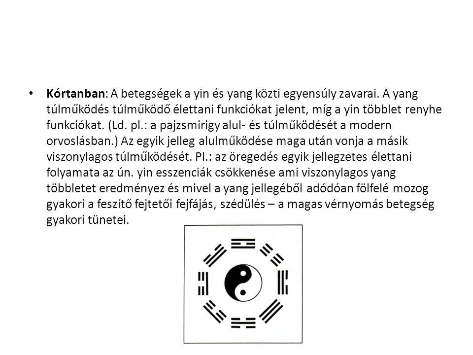 Kórtanban: A betegségek a yin és yang közti egyensúly zavarai