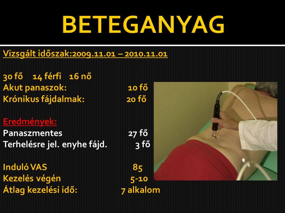 BETEGANYAG Vizsgált időszak:2009.11.01 – 2010.11.01