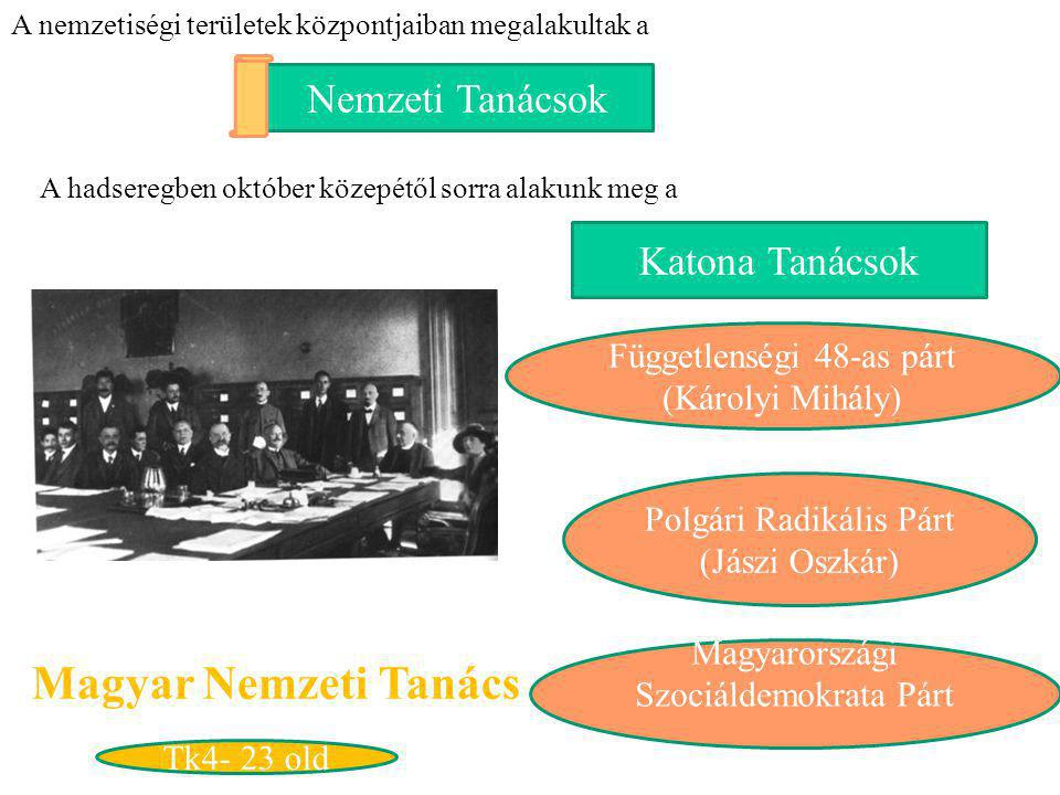 Magyar Nemzeti Tanács Nemzeti Tanácsok Katona Tanácsok