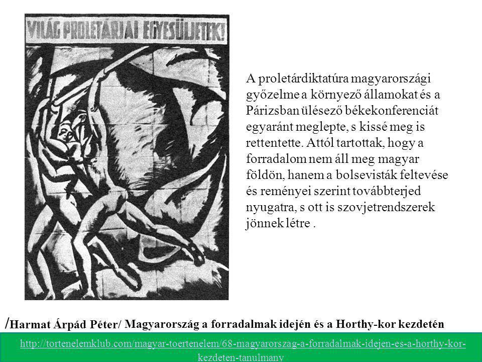 A proletárdiktatúra magyarországi győzelme a környező államokat és a Párizsban ülésező békekonferenciát egyaránt meglepte, s kissé meg is rettentette. Attól tartottak, hogy a forradalom nem áll meg magyar földön, hanem a bolsevisták feltevése és reményei szerint továbbterjed nyugatra, s ott is szovjetrendszerek jönnek létre .