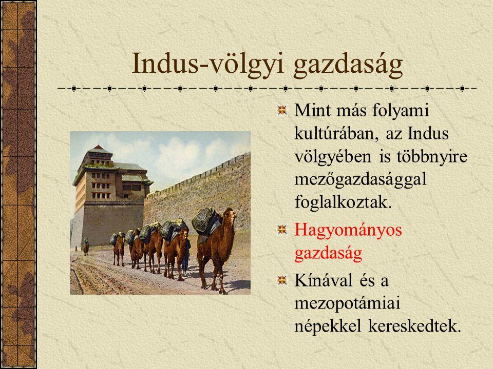 Indus-völgyi gazdaság