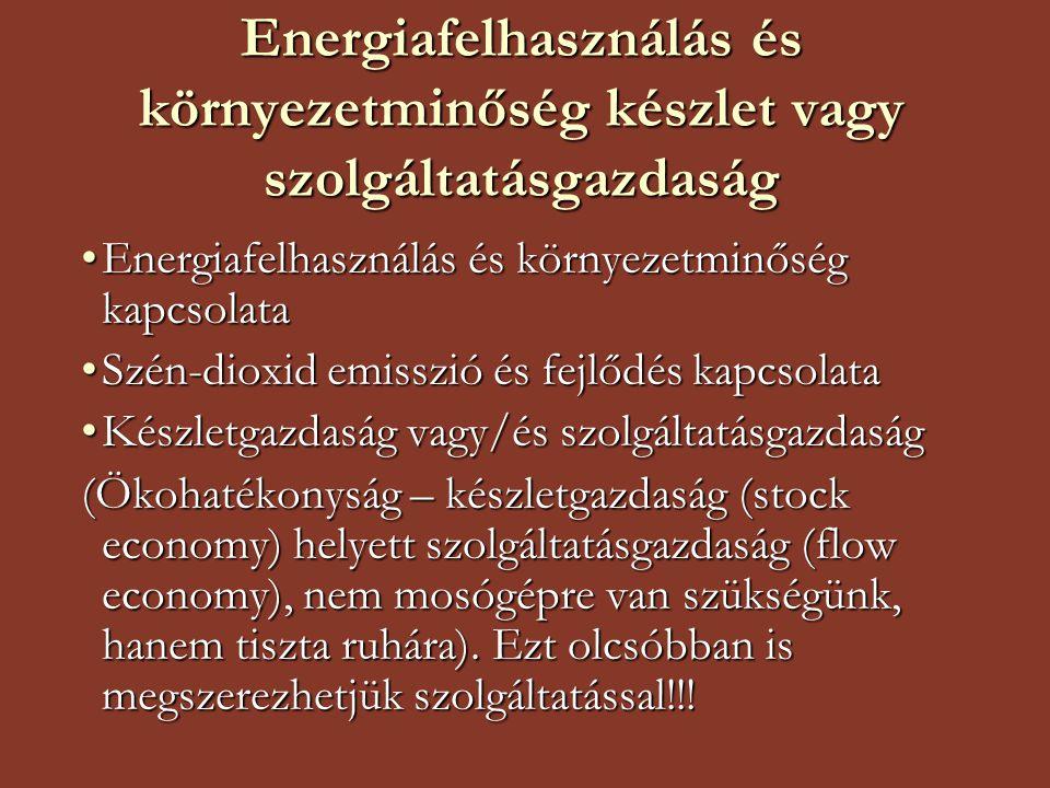 Energiafelhasználás és környezetminőség készlet vagy szolgáltatásgazdaság