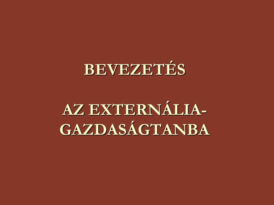 BEVEZETÉS AZ EXTERNÁLIA-GAZDASÁGTANBA