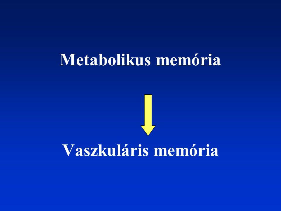 Metabolikus memória Vaszkuláris memória
