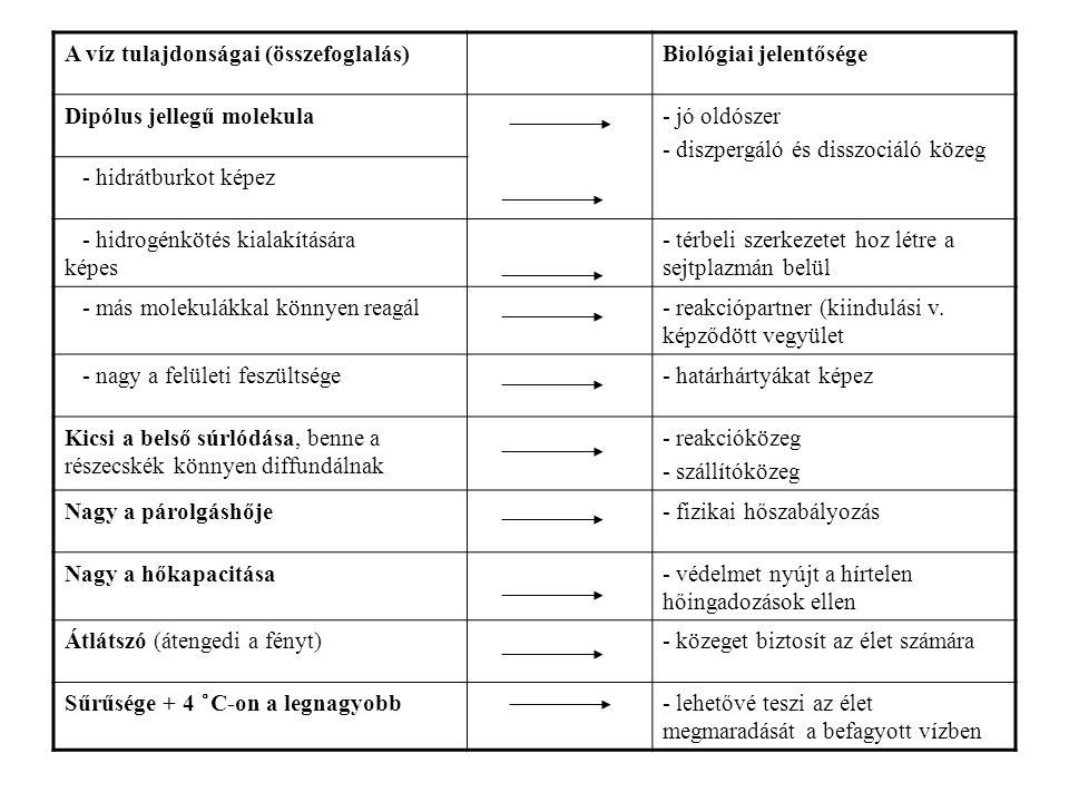 A víz tulajdonságai (összefoglalás)