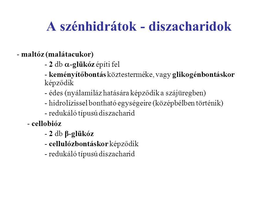 A szénhidrátok - diszacharidok