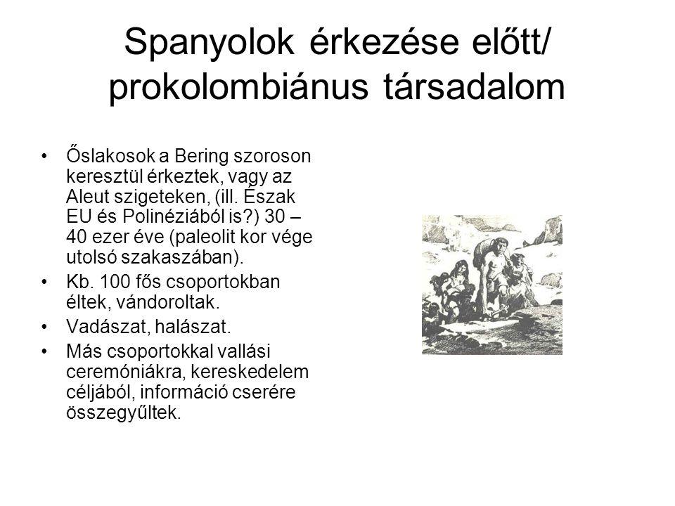 Spanyolok érkezése előtt/ prokolombiánus társadalom