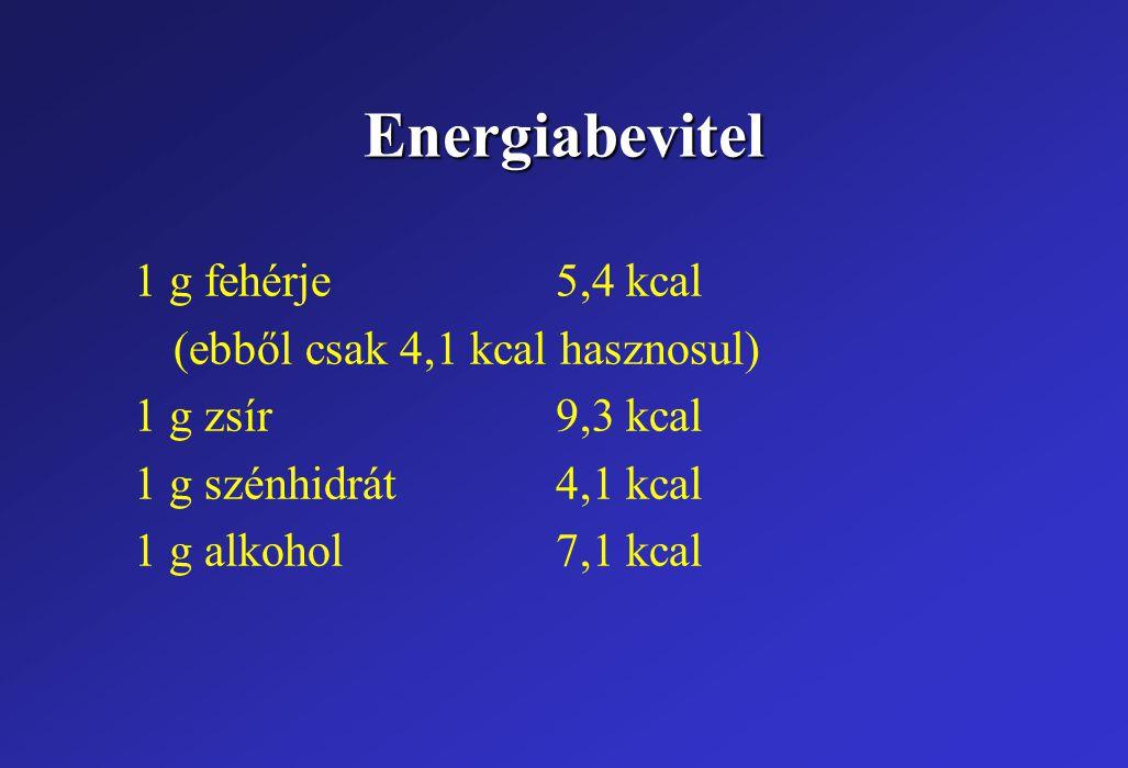 Energiabevitel 1 g fehérje 5,4 kcal (ebből csak 4,1 kcal hasznosul)