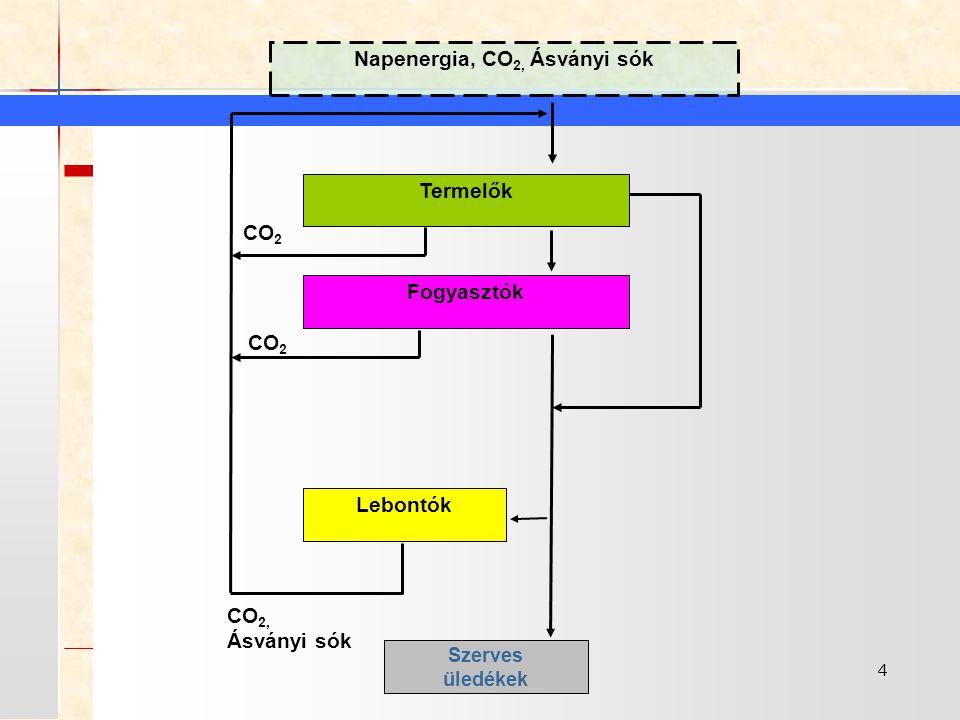 Napenergia, CO2, Ásványi sók
