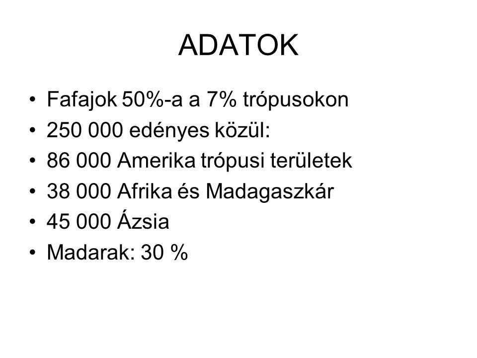 ADATOK Fafajok 50%-a a 7% trópusokon 250 000 edényes közül: