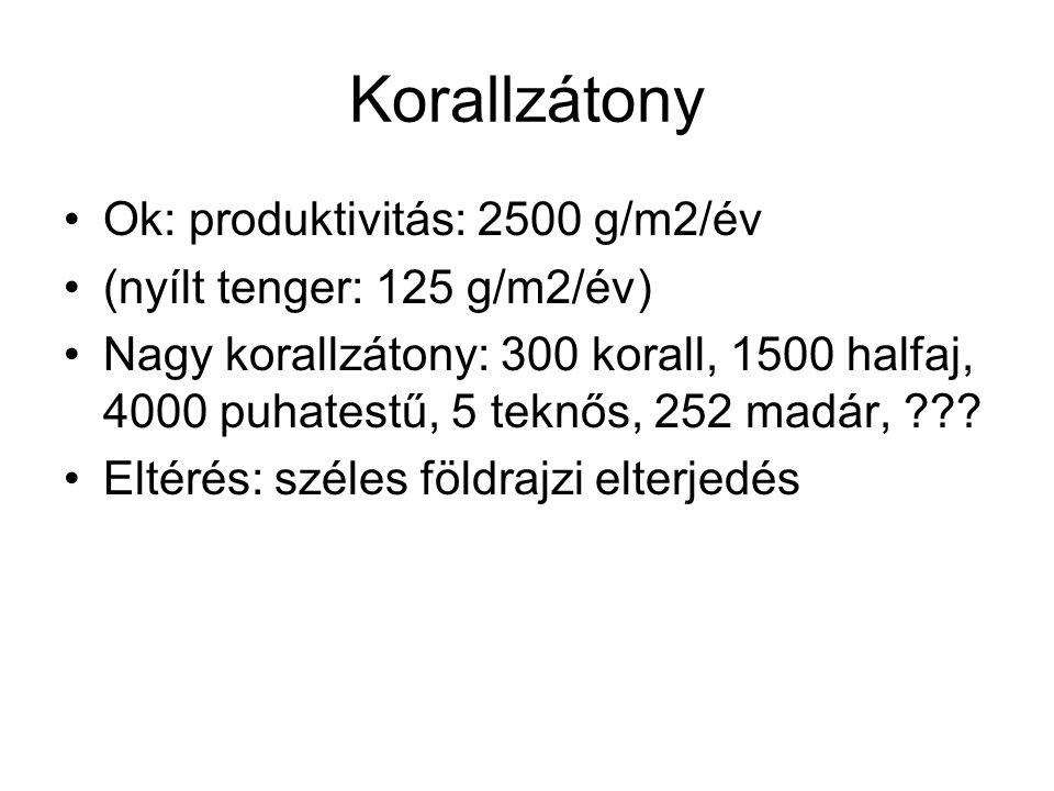 Korallzátony Ok: produktivitás: 2500 g/m2/év