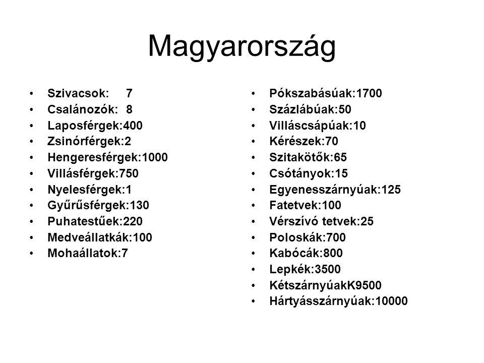 Magyarország Szivacsok: 7 Csalánozók: 8 Laposférgek:400 Zsinórférgek:2