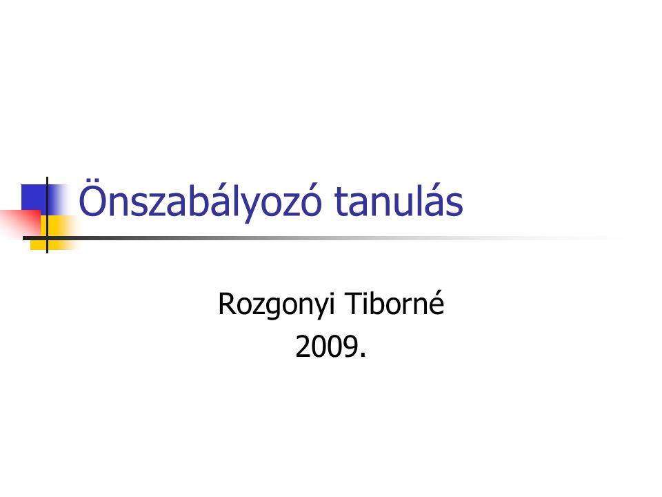 Önszabályozó tanulás Rozgonyi Tiborné 2009.