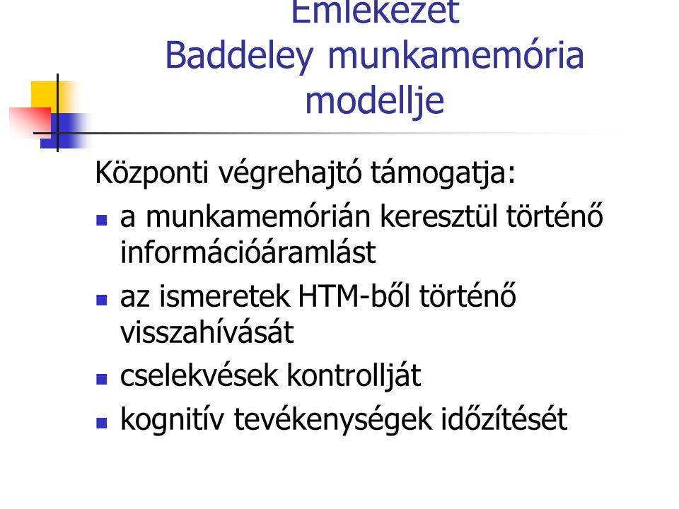 Emlékezet Baddeley munkamemória modellje