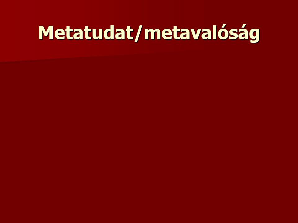 Metatudat/metavalóság