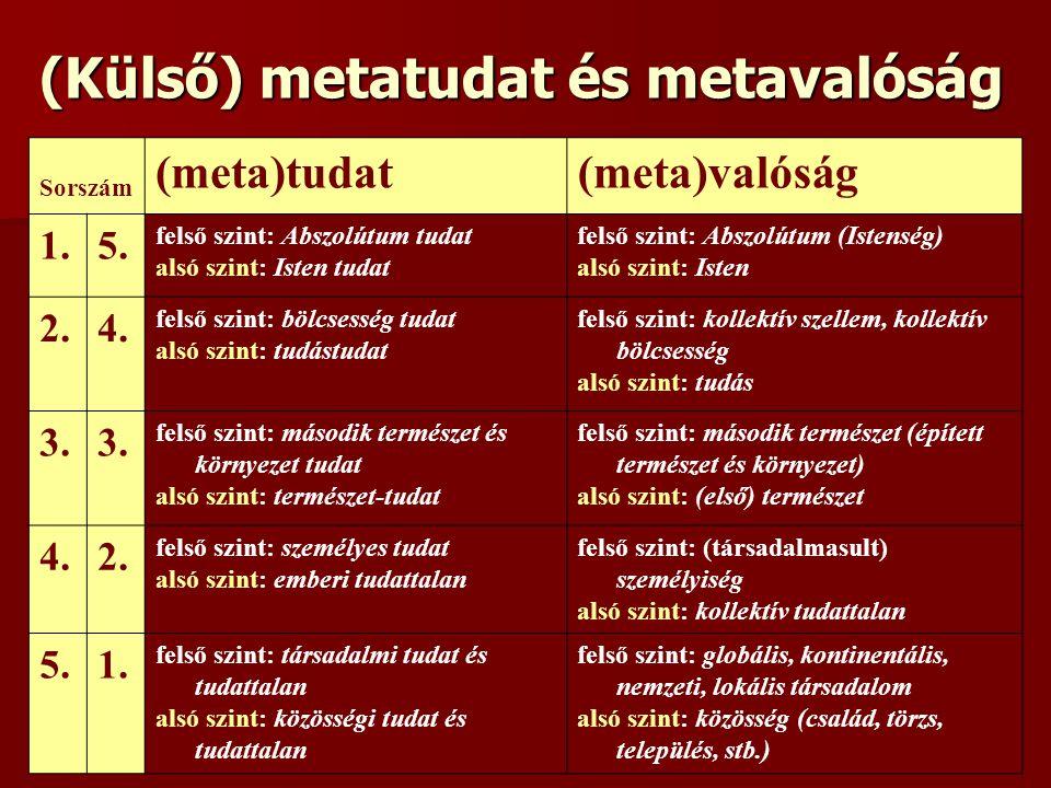 (Külső) metatudat és metavalóság