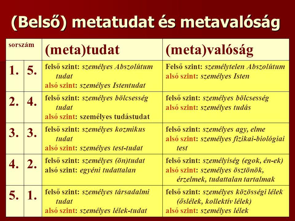 (Belső) metatudat és metavalóság