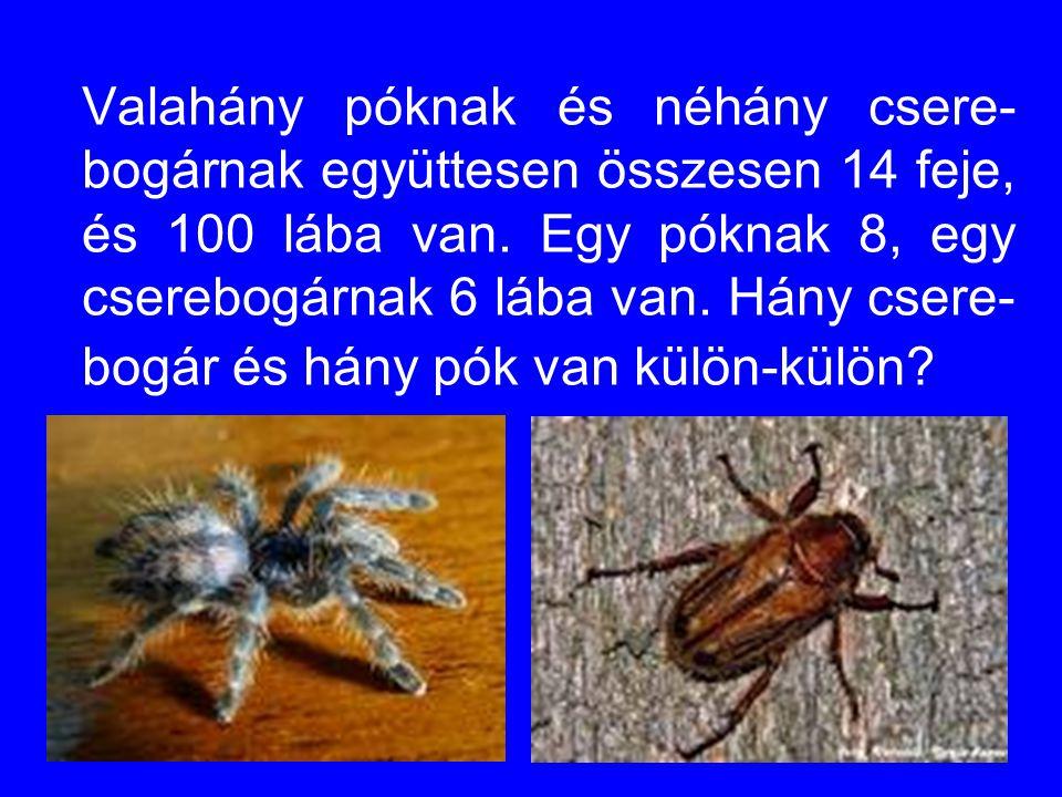 Valahány póknak és néhány csere- bogárnak együttesen összesen 14 feje, és 100 lába van.
