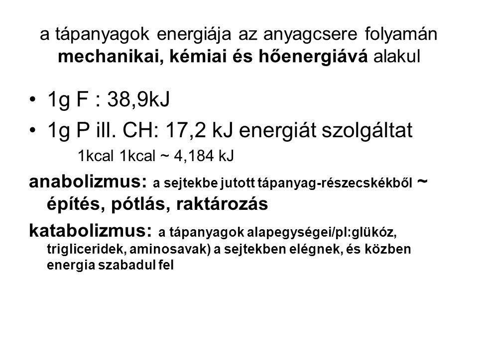 1g P ill. CH: 17,2 kJ energiát szolgáltat