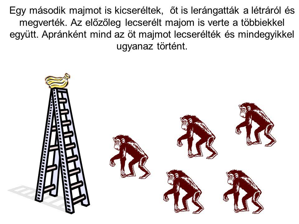 Egy második majmot is kicseréltek, őt is lerángatták a létráról és megverték.