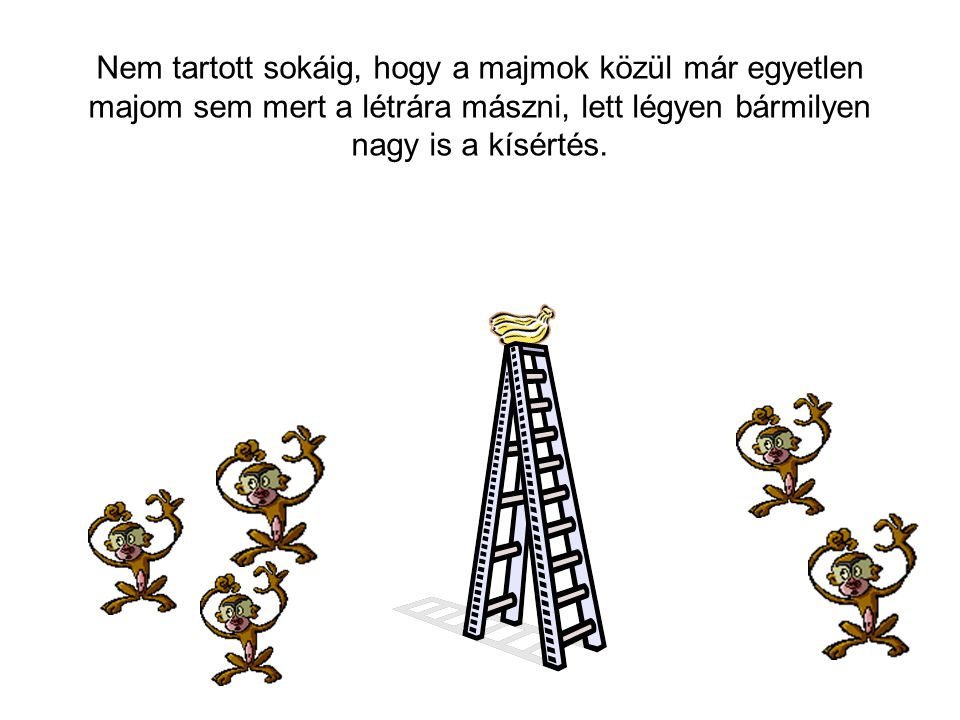Nem tartott sokáig, hogy a majmok közül már egyetlen majom sem mert a létrára mászni, lett légyen bármilyen nagy is a kísértés.