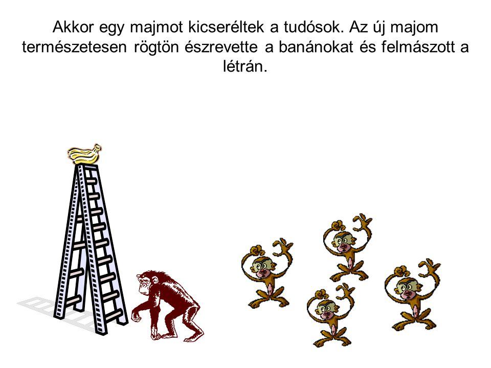 Akkor egy majmot kicseréltek a tudósok