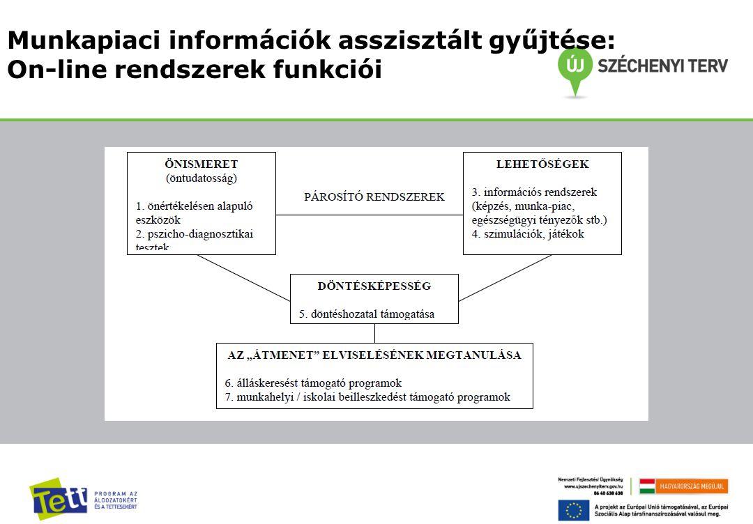 Munkapiaci információk asszisztált gyűjtése: