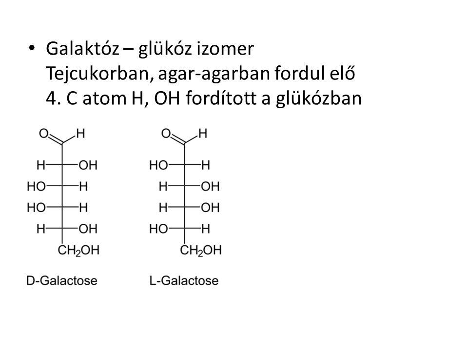 Galaktóz – glükóz izomer Tejcukorban, agar-agarban fordul elő 4