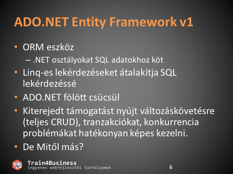 ADO.NET Entity Framework v1