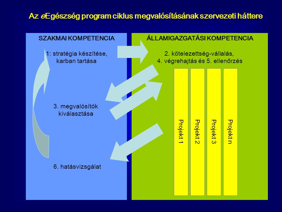 Az eEgészség program ciklus megvalósításának szervezeti háttere