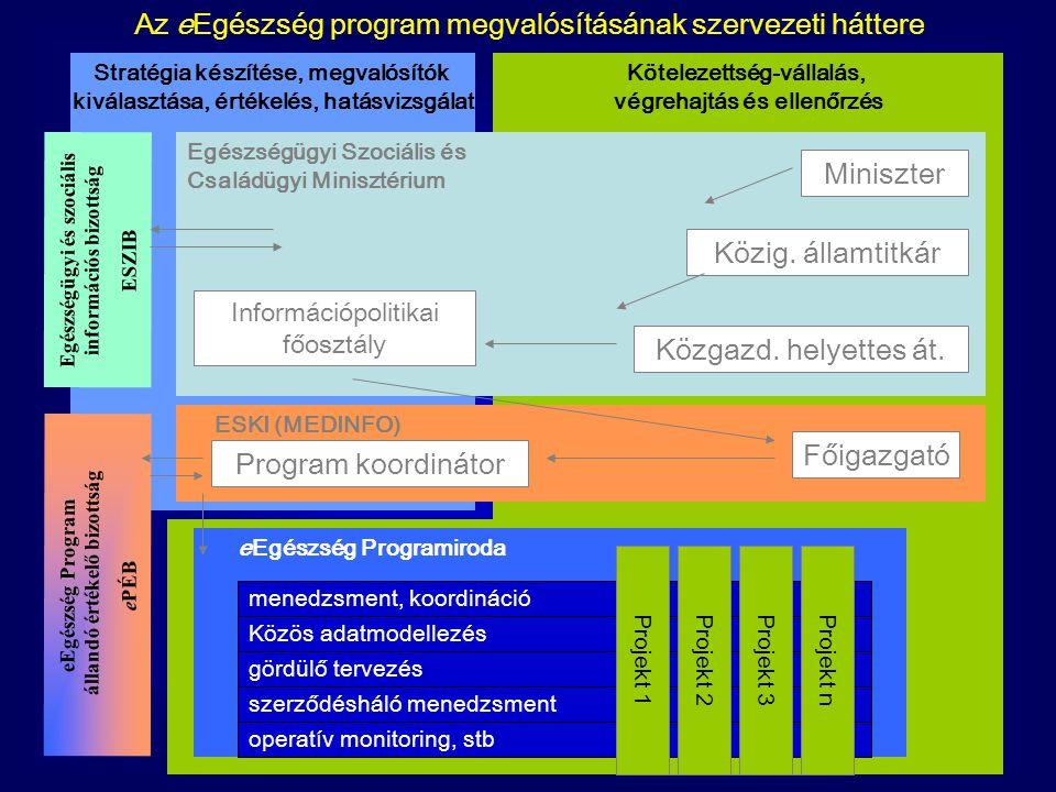 Az eEgészség program megvalósításának szervezeti háttere