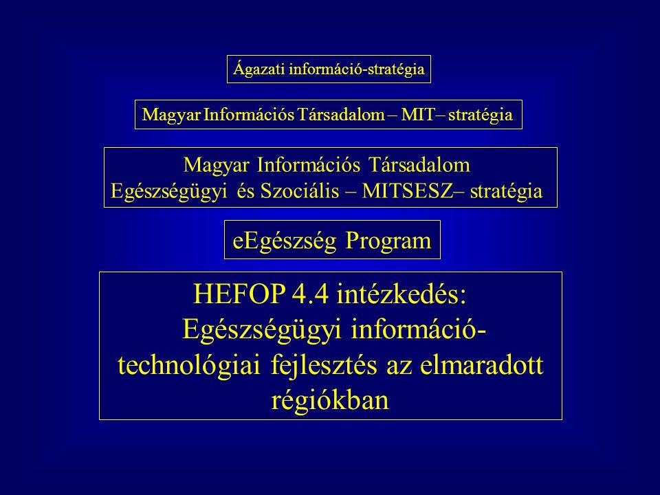 Ágazati információ-stratégia