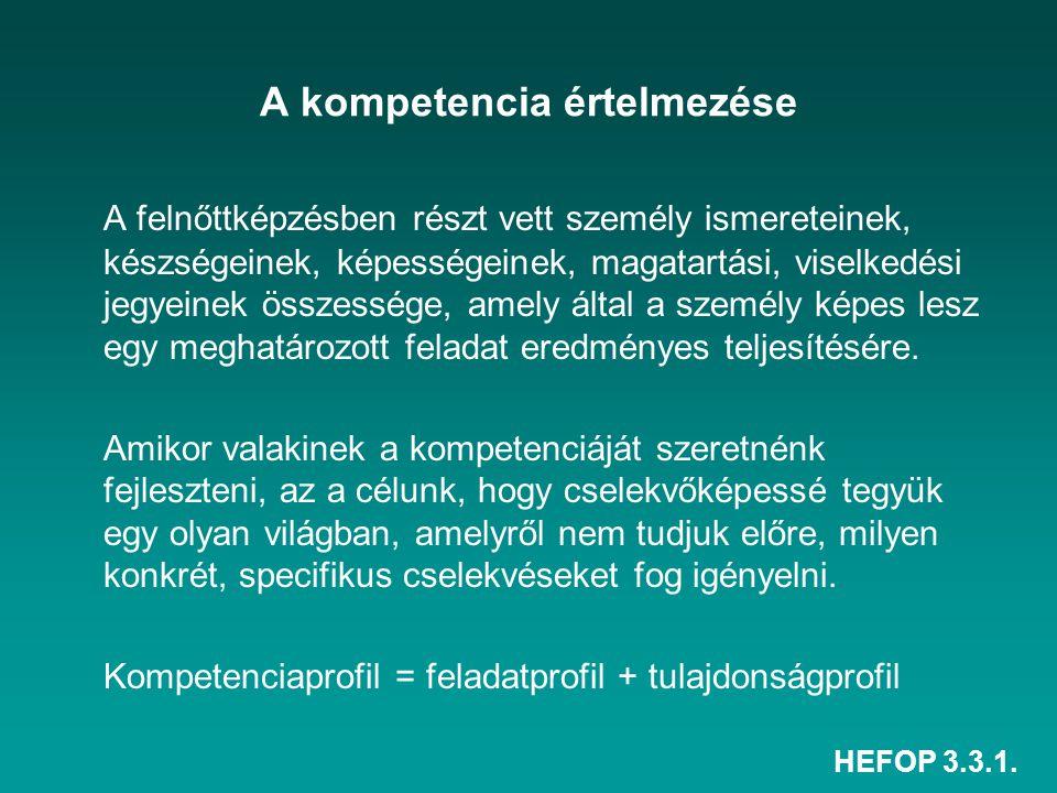 A kompetencia értelmezése