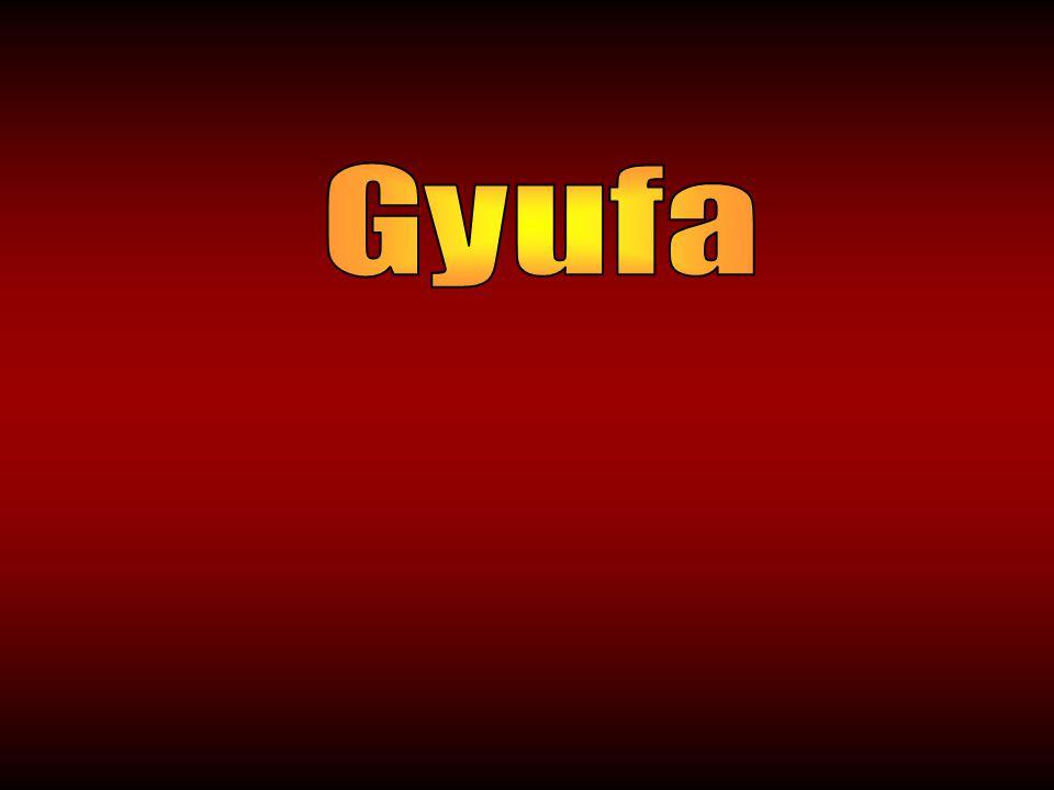 Gyufa