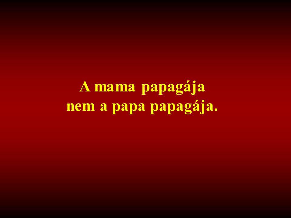 A mama papagája nem a papa papagája.