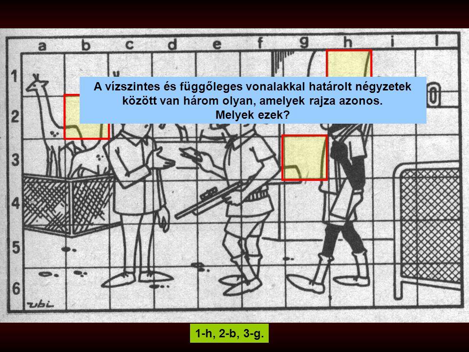 A vízszintes és függőleges vonalakkal határolt négyzetek között van három olyan, amelyek rajza azonos.