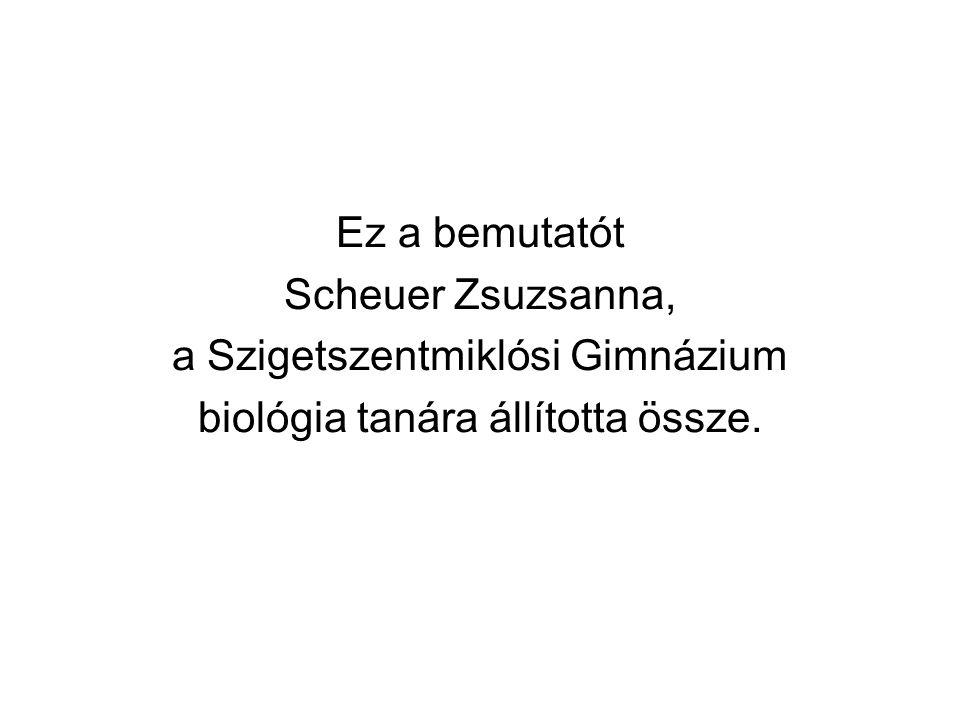 a Szigetszentmiklósi Gimnázium biológia tanára állította össze.