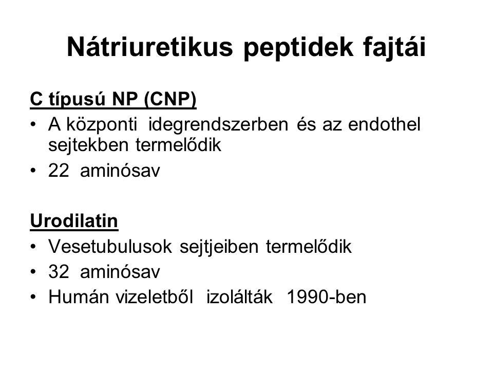 Nátriuretikus peptidek fajtái