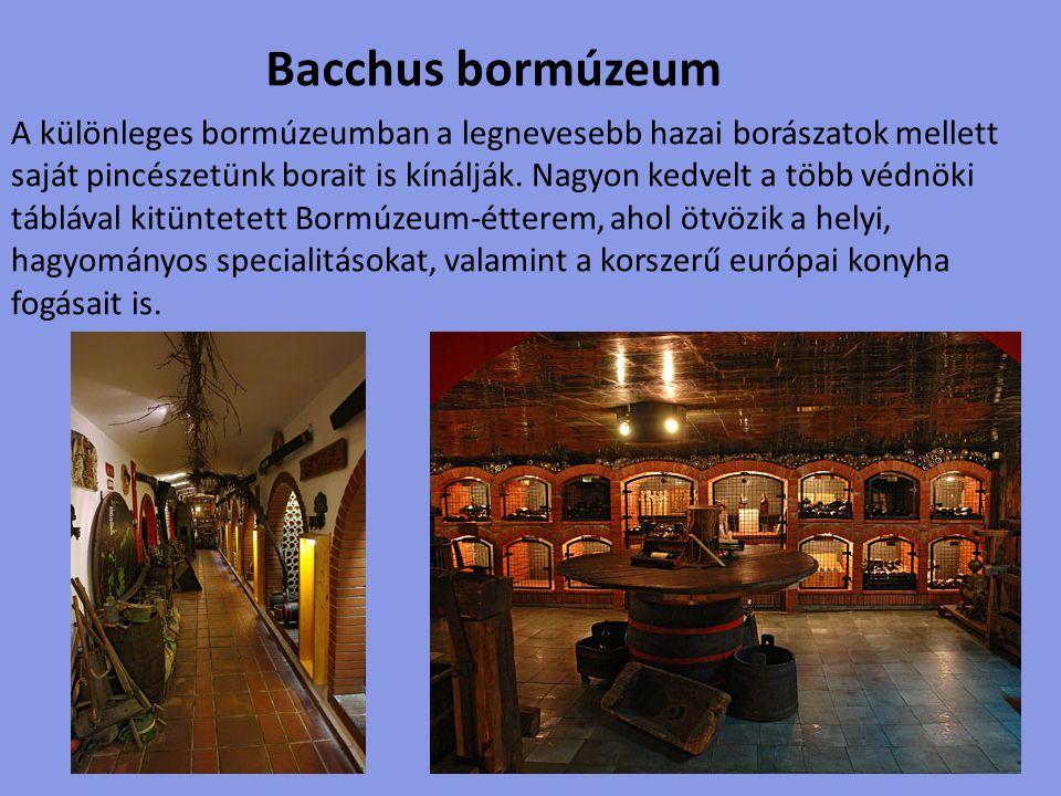 Bacchus bormúzeum