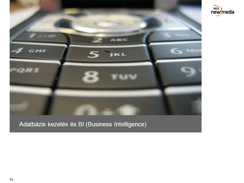 Adatbázis kezelés és BI (Business Intelligence)
