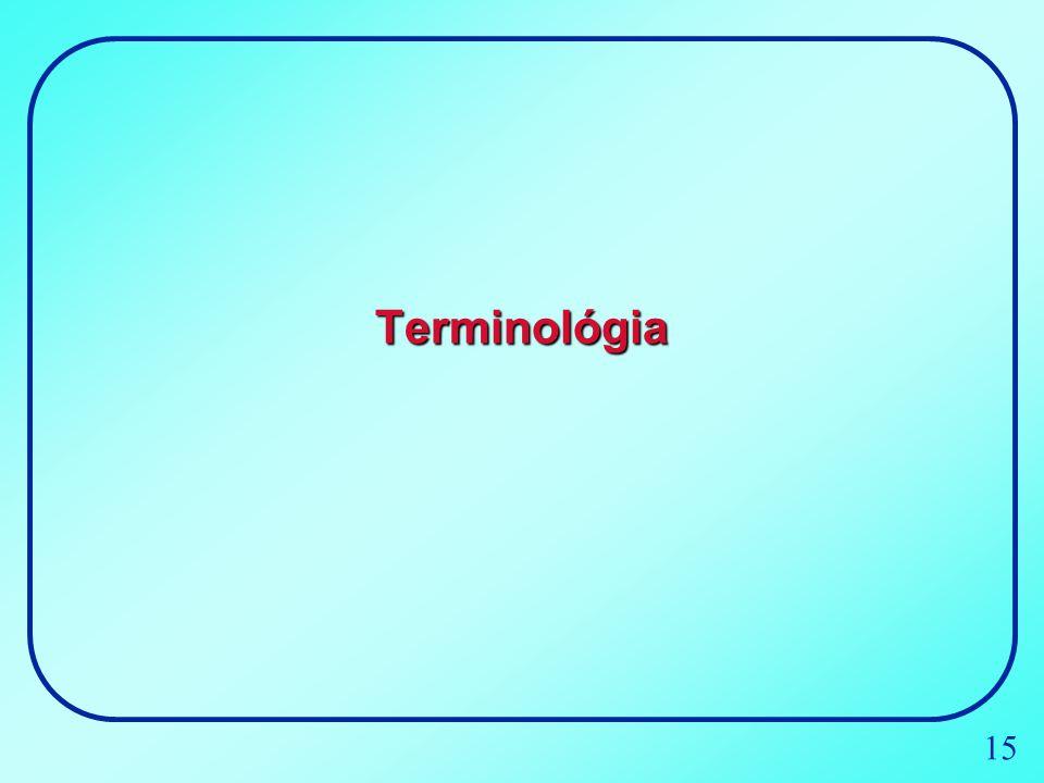 Terminológia