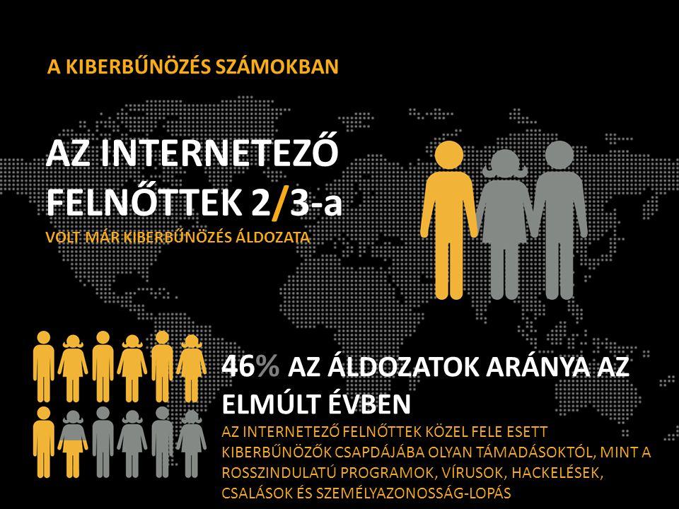 AZ INTERNETEZŐ FELNŐTTEK 2/3-a VOLT MÁR KIBERBŰNÖZÉS ÁLDOZATA