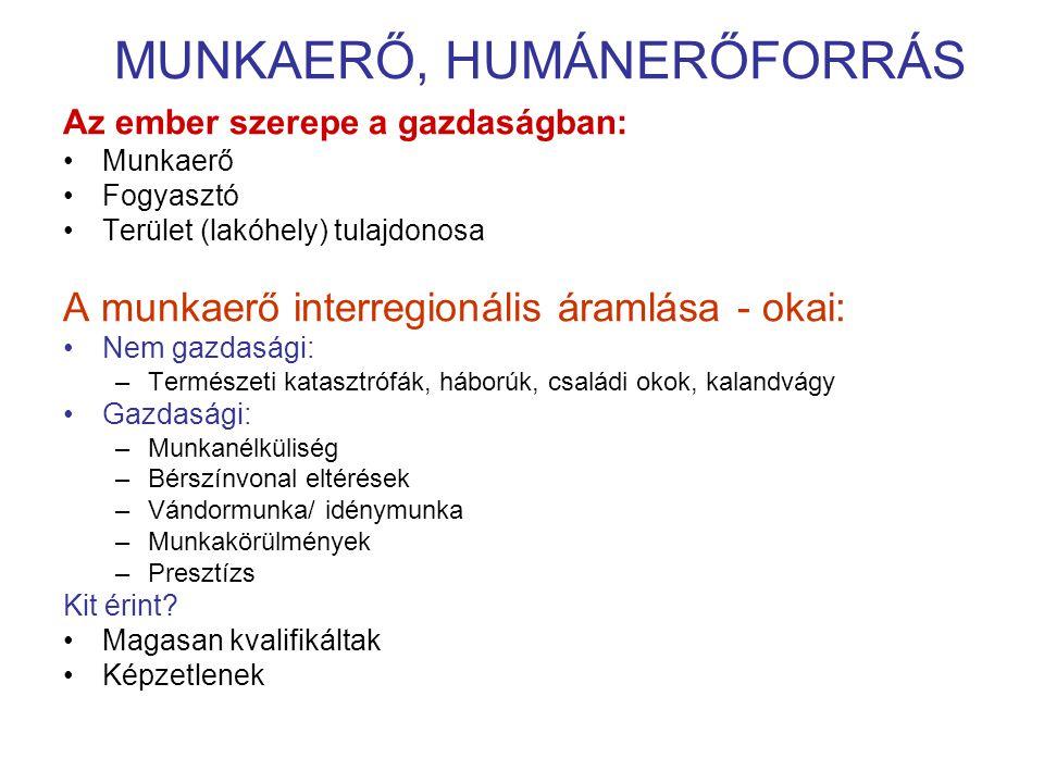 MUNKAERŐ, HUMÁNERŐFORRÁS
