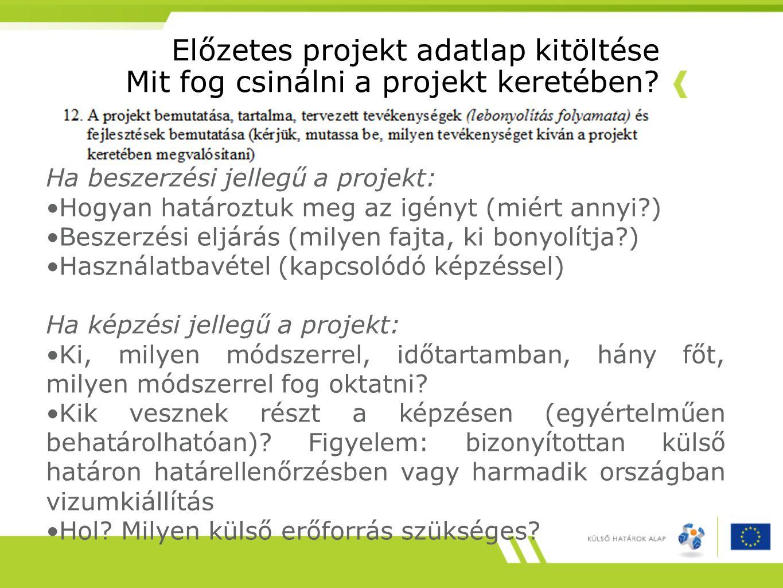 Előzetes projekt adatlap kitöltése Mit fog csinálni a projekt keretében