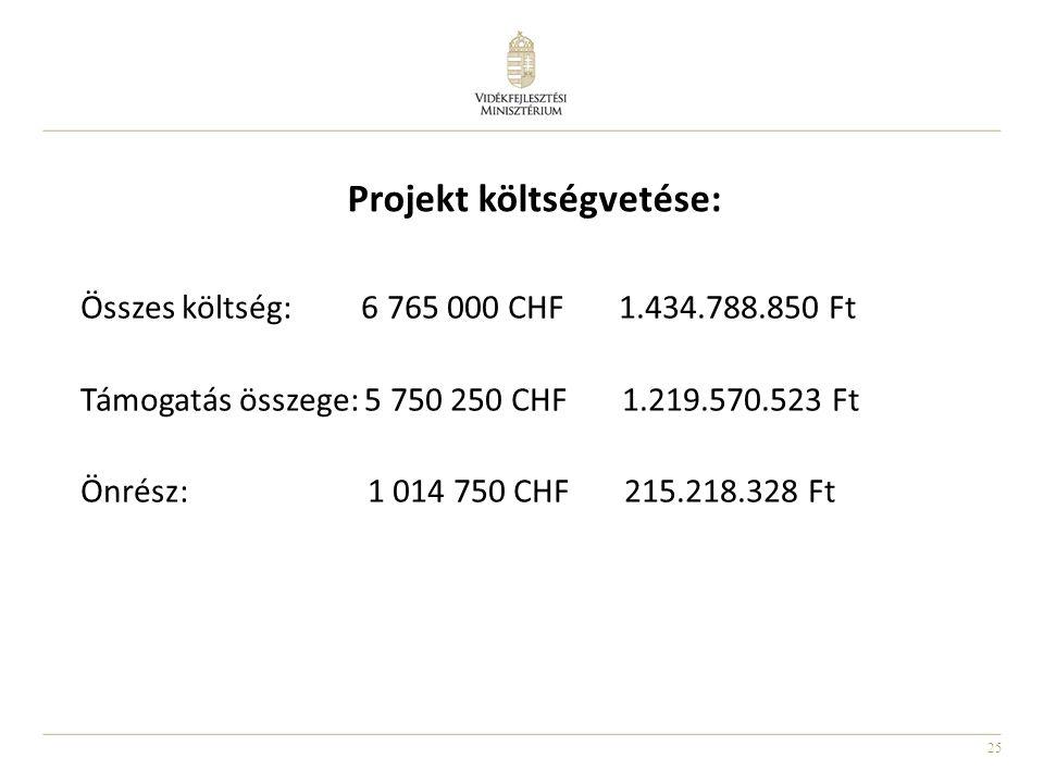 Projekt költségvetése: