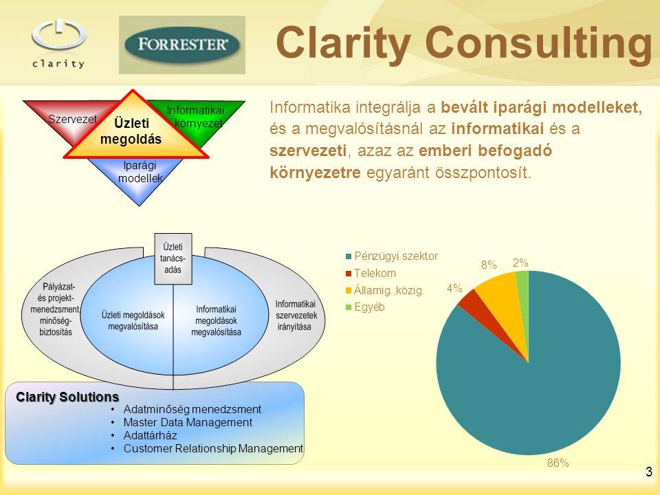 Clarity Consulting Iparági. modellek. Szervezet. Informatikai. környezet. Üzleti. megoldás.