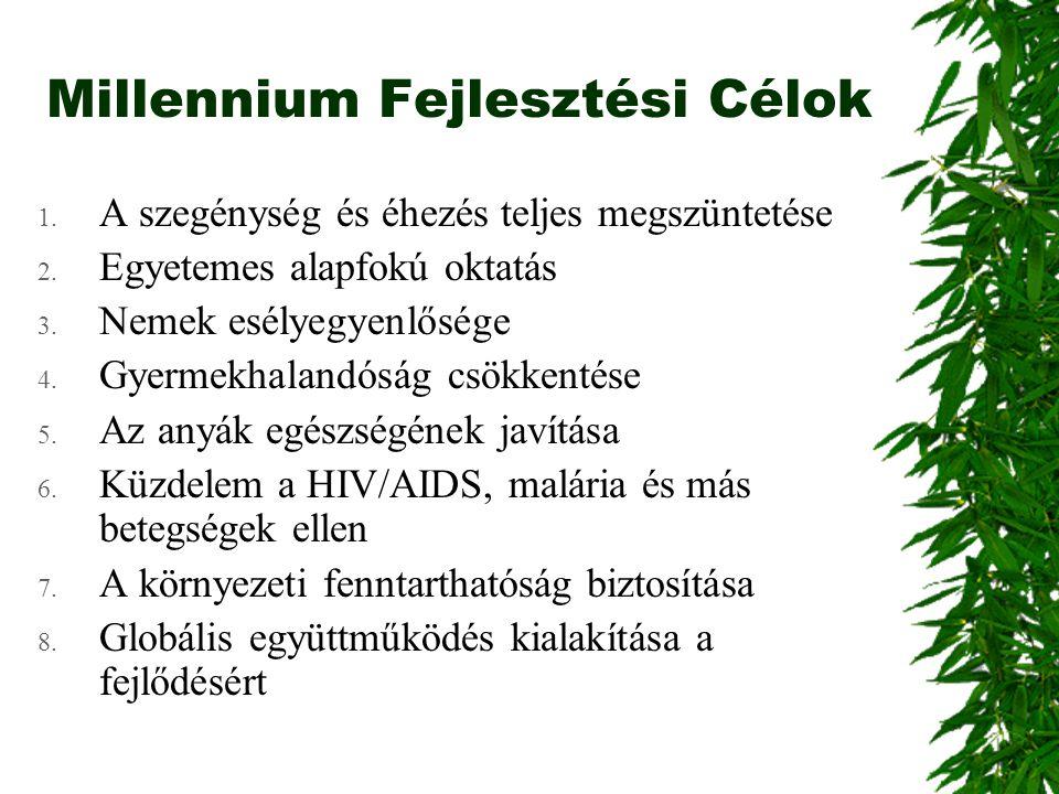 Millennium Fejlesztési Célok