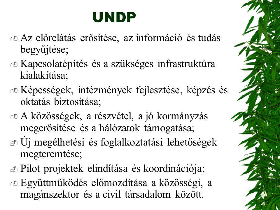 UNDP Az előrelátás erősítése, az információ és tudás begyűjtése;