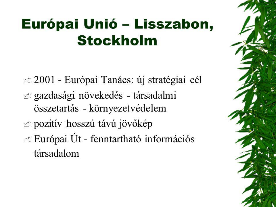 Európai Unió – Lisszabon, Stockholm
